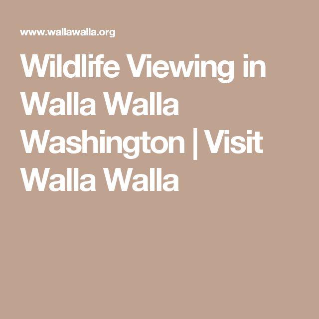 Wildlife Viewing in Walla Walla Washington | Visit Walla Walla