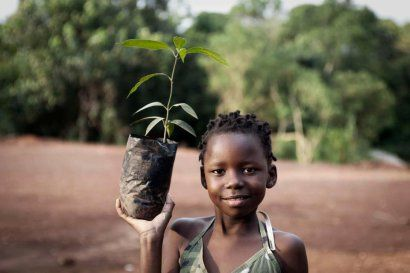 Greenpop have run many great projects, including Trees for Zambia