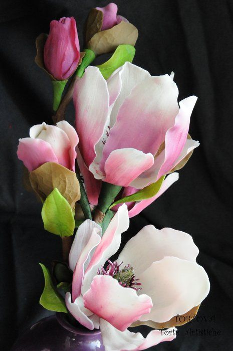 The Magnolia flower ~ is attached with symbols of nobility, perseverance, and love of nature.