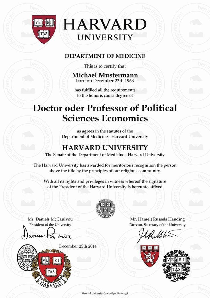 resume sample harvard university