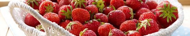 Erdbeeren-Rezepte - Erdbeerrezepte | Erdbeermarmelade | Erdbeerkuchen | Erdbeertorte - LECKER.de