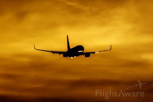 Ryanair B738 (EI-EVD)