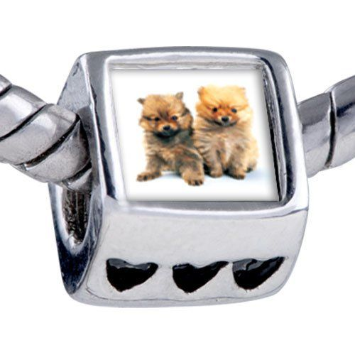 Pugster Bead Chow Twins Beads Fits Pandora Bracelet Pugster. $12.49. Unthreaded European story bracelet design. Fit Pandora, Biagi, and Chamilia Charm Bead Bracelets. It's the photo on the heart charm. Bracelet sold separately. Hole size is approximately 4.8 to 5mm