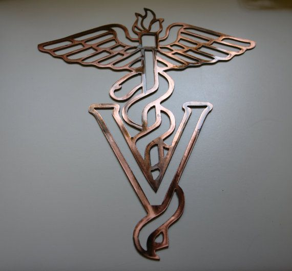 Caduceus Metal Art Sign Veterinary By Heavensgatemetalwork