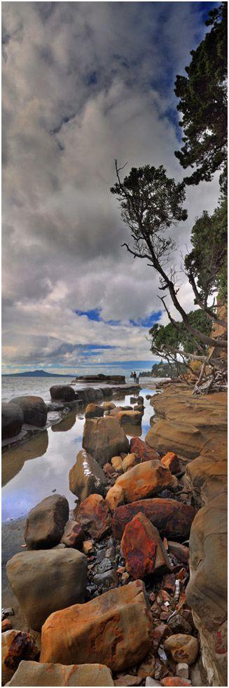 Tatarata Point, Murray's Bay - Auckland North Shore