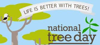 Happy National Tree Day GREEN -> OXYGEN -> LIFE Let's spread the chain.  www.bestofelectricals.com