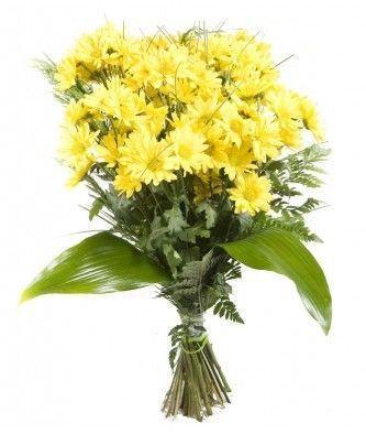 Ramo flores margaritas amarillas