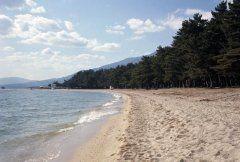 これか気持ち良い季節ですよね海水浴 ですが滋賀県民にとっては琵琶湖で遊ぶ湖水浴が一般的 琵琶湖のいたる所にたくさんのビーチ水泳場があるんです海水の様にベタベタしないので琵琶湖で水遊びって県外の方にもおすすめしたいです 特に人気なのは近江舞子水泳場 透き通った水と白い砂浜が眩しいですね ビーチに簡易テントを貼ったりすることができませんがトイレシャワーロッカーなどの施設は整っています 近くにはBBQができるエリアもあるので合わせて楽しむことができますよ 7月1日には浜開きが行われていますので梅雨が明けたらぜひぜひ遊びに行ってみてください()v  #夏休み #琵琶湖 #ビーチ #遊ぶ tags[滋賀県]