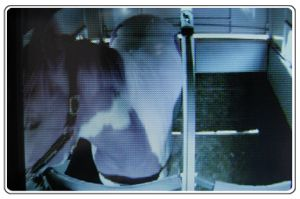 iSPY is different from any other wireless horse trailer camera that you could choose.