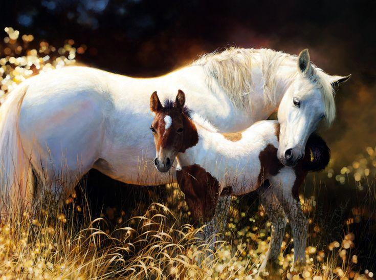 Смешные картинки, красивые открытки с лошадями