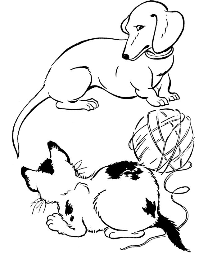 dachshund dog coloring page