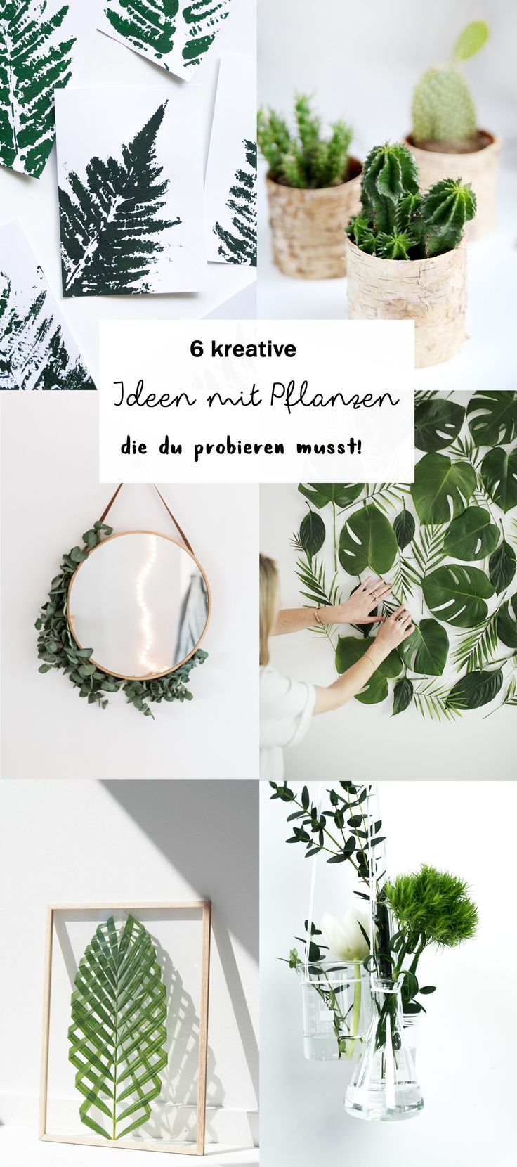 6 kreative Ideen für Pflanzen Deko