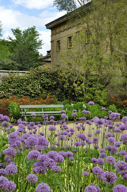 Belsay Hall Gardens, Northumberland. UK. http://www.europealacarte.co.uk/blog/2013/03/21/things-to-do-i-northumberland