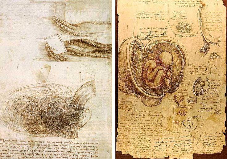 Bocetos de estudios - Leonardo Da Vinci