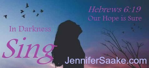 In grief, loss, discouragement, and unanswered questions, you are not alone! Chiropractic stroke survivor, Jennifer Saake (Hannah's Hope author) invites you on a faith journey.