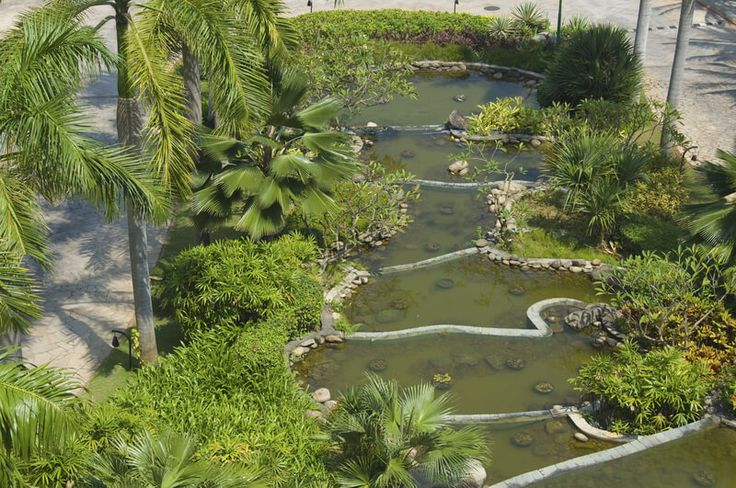 Birds eye view of a new Chinese water garden of hotel.