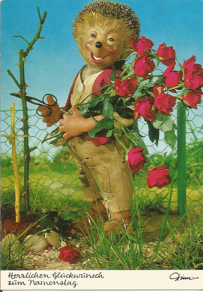 Postkarte - Mecki - Diehl Film - Herzlichen Glückwunsch zum Namenstag - Rosen in Sammeln & Seltenes, Ansichtskarten, Motive | eBay