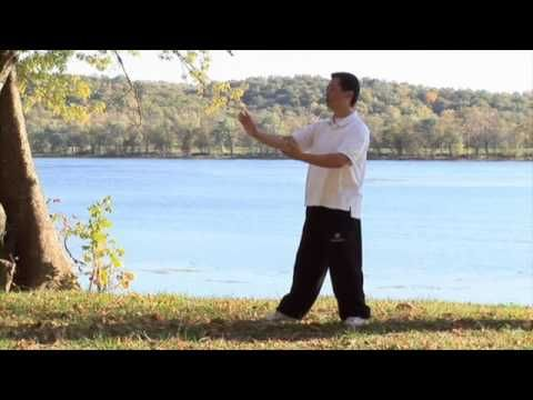 Tai Chi for Beginners Starring Chris Pei (2011) (full DVD)... This is a 3+ hour video... he starts by explaining things for the first 15 minutes. I think this is where I will start. (Why Tai Chi? To help with stress! Besides... Balance is Best!)