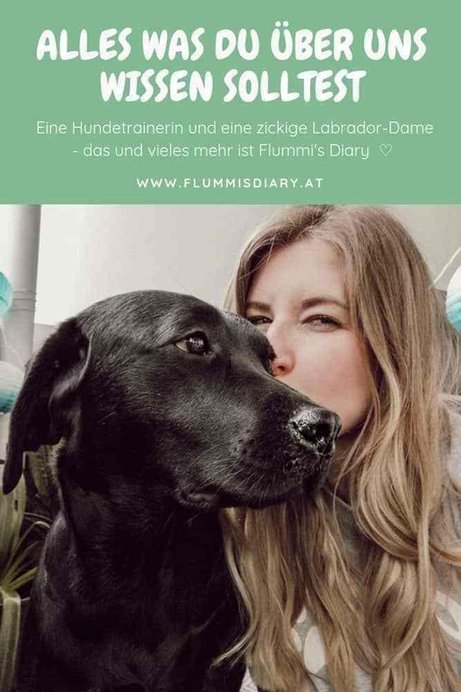 Hundeblog Aus Osterreich Flummi S Diary Vollzeitjob Hund Hunde Diy Hunde Hund Diy Flummi