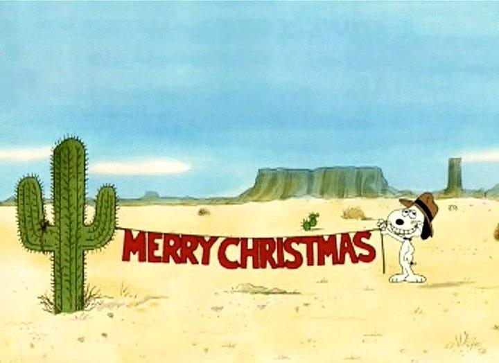 26 best Arizona Winter Wonderland images on Pinterest | Winter ...
