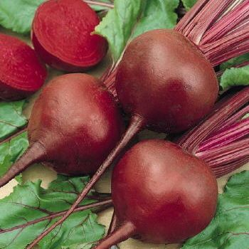 Beets 'Red Ace'  (200 seeds, $1.99)