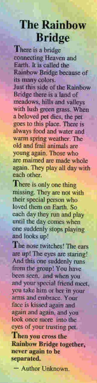 The Rainbow Bridge Poem. In honor of our dear Cocoa. My heart aches for you. I have missed you really bad today. Love mom
