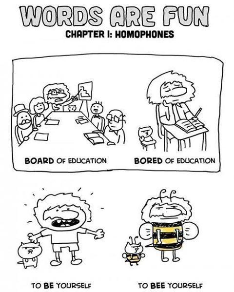 Homophones make English fun. :)