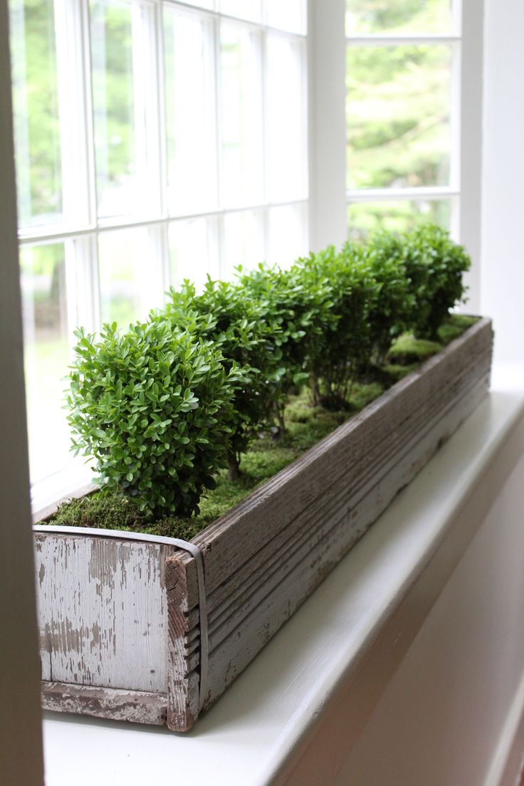 best 25 kitchen garden window ideas on pinterest window plants