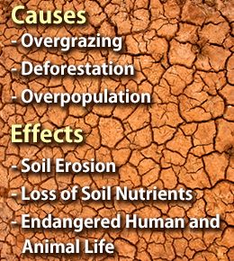 Desertification: Meaning, Causes, Effects and Solutions