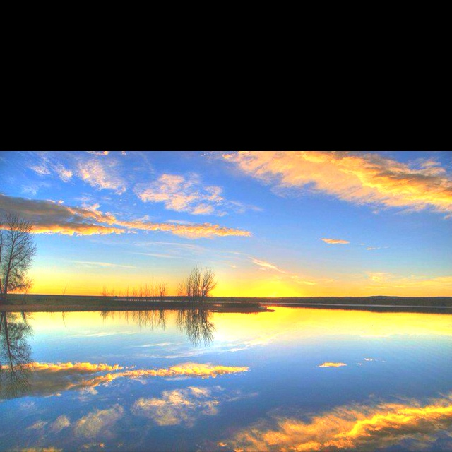 Littleton Colorado: 81 Best Littleton, Colorado Images On Pinterest