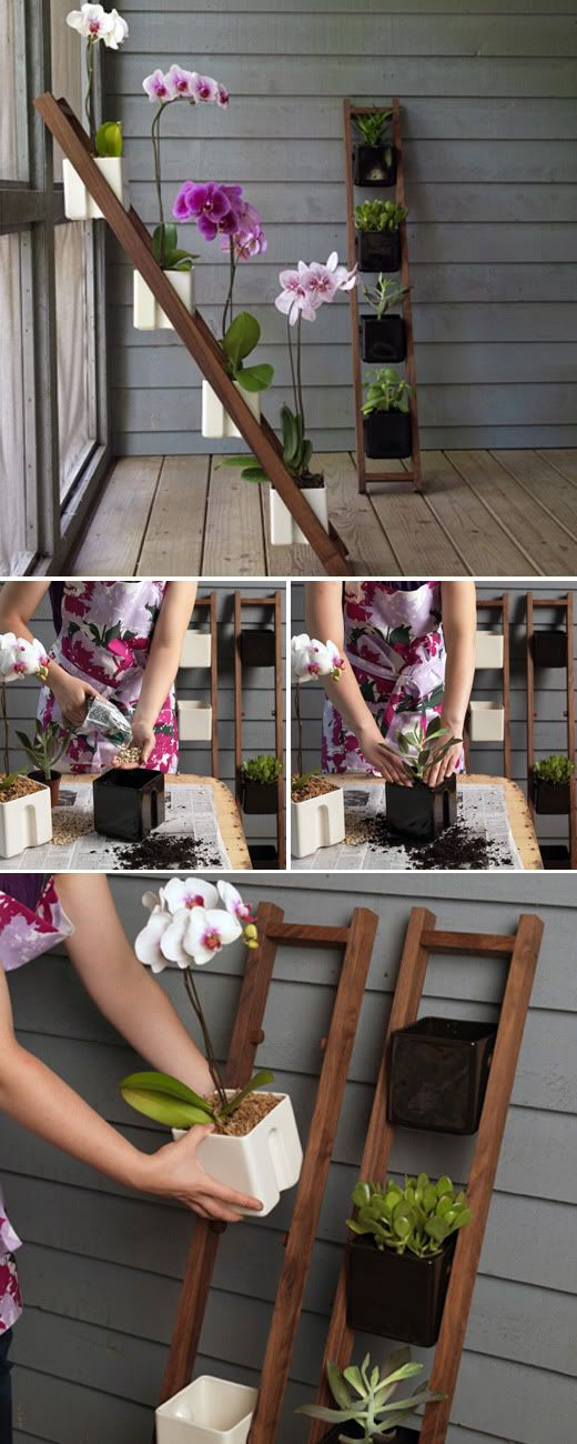Cute ladder planter
