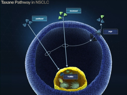 Bac lung cancer hbot