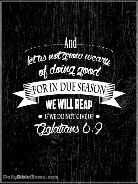"""Galatians 6:9  """"And let us not grow weary of doing good, for in due season we will reap, if we do not give up.""""  I  DailyBibleMeme.com"""