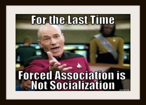 For the Last Time Forced Association is Not Socialization