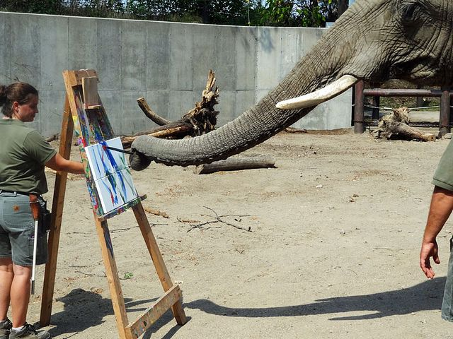 Move Over, Picasso: Watch Elephants Paint at the Indianapolis Zoo