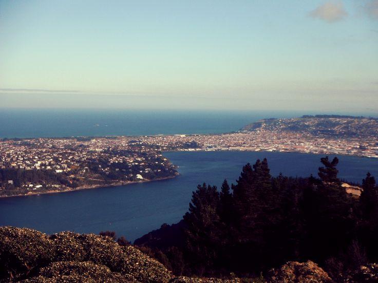 Signal Hill Lookout, Dunedin.