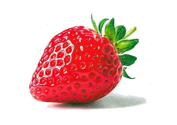 """83 Likes, 9 Comments - 강남 길 미술학원 (@gilartschool) on Instagram: """"딸기개체 그려달라는 문의가 있어 올려봅니다 도움이 되시기를................ #딸기 그리기 #과일스타그램 #과일표현 #셀스다그램 시험 #출제문제 #기초디자인  #얼스타…"""""""