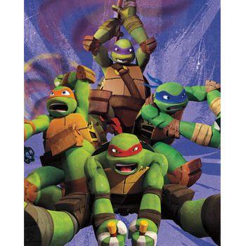 133 best shanes new bedroom ideas images on pinterest teenage mutant ninja turtles 34 beds and bedroom ideas