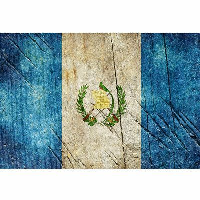 Picture It On Canvas Guatemala Flag Painting Print