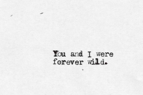 27 Best Love For The Wild Quotes Images On Pinterest: 25+ Best Ideas About Wild Hearts On Pinterest