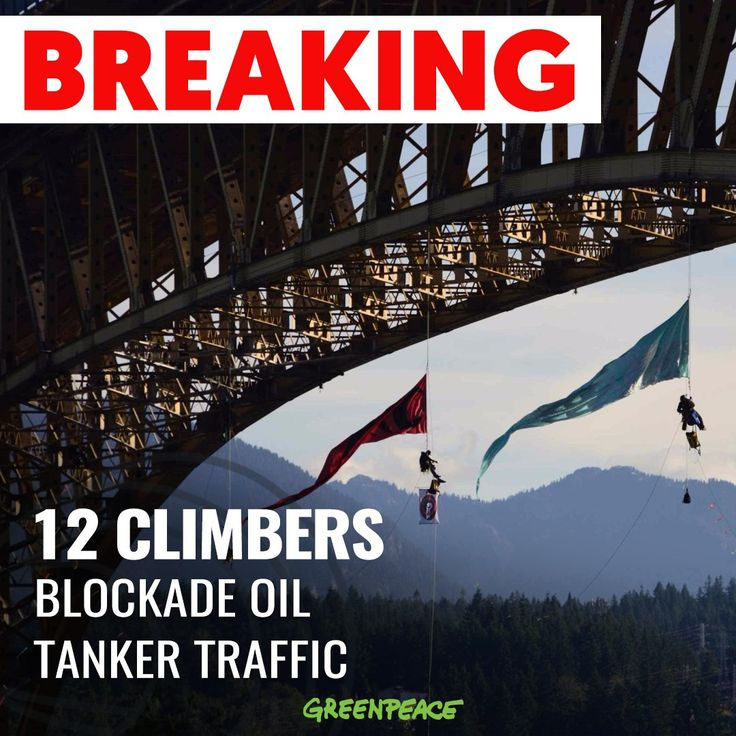 More  12 people created a beautiful aerial blockade to stop a tanker from carrying tar sands oil from the #TransMountain pipeline terminal down the Pacific coast. Indigenous rights, clean water, a safe climate... What's your reason to stand with these climbers to #StopPipelines?