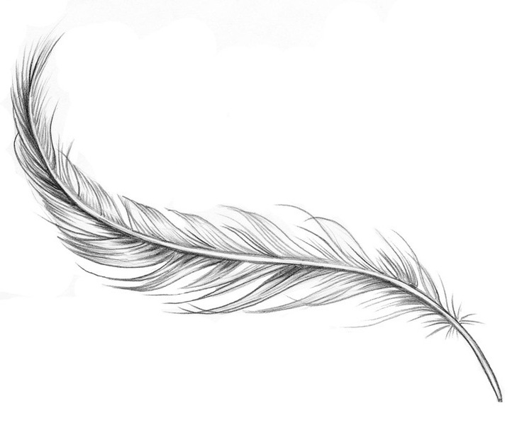 Feather Tattoo - Forearm or ribs