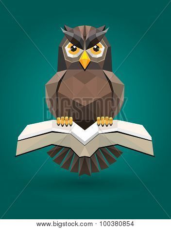Vector, shape owl and book