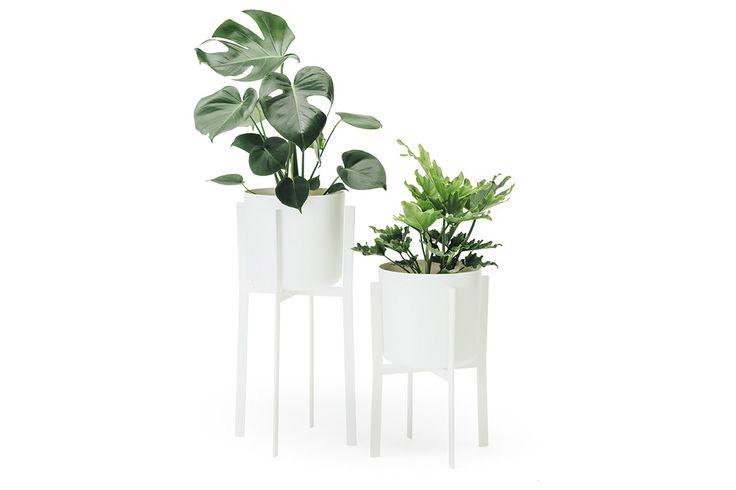 Helio Planter white