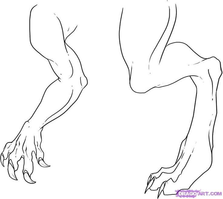how to draw dragon legs arms and talons step 7