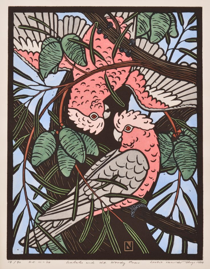 LESLIE VAN DER SLUYS (1939-2010) Galahs and W.A. Woody Pear 1984 hand-colou