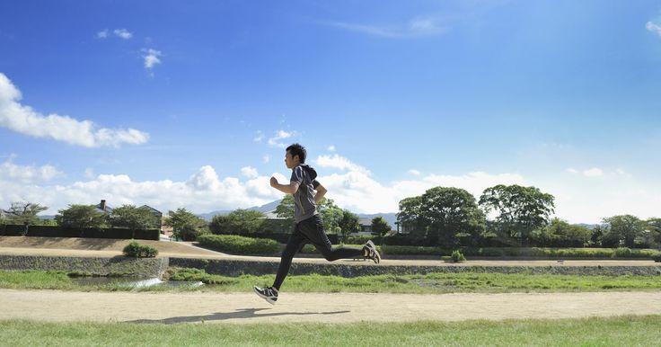 Dieta para corredores principiantes. Si eres un corredor principiante, lo más probable es que sientas el impulso de ponerte en forma, para sentirte mejor y tal vez perder un poco de peso, también. Pronto te darás cuenta que cuanto más corras, más peso eliminas, pero debes entender que además tienes que ajustar tu nutrición. Comprender la importancia y el papel que tanto los ...