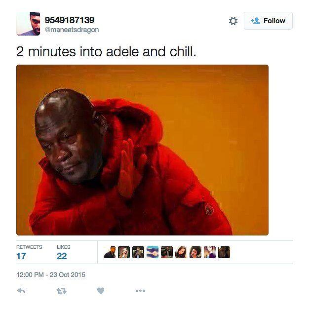 Celebrity 15 Hilarious Adele Memes That Almost Broke The Internet - http://www.sqba.co/celebrity/celebrity-15-hilarious-adele-memes-that-almost-broke-the-internet/