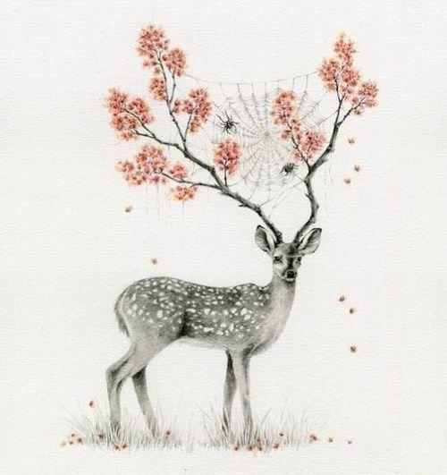 Love this deer.