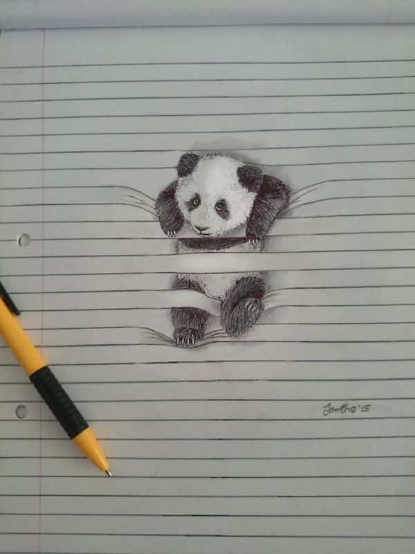 Playful Drawings Of Animals That Are 'Tangled Up' In The Lines Of Notepaper - DesignTAXI.com
